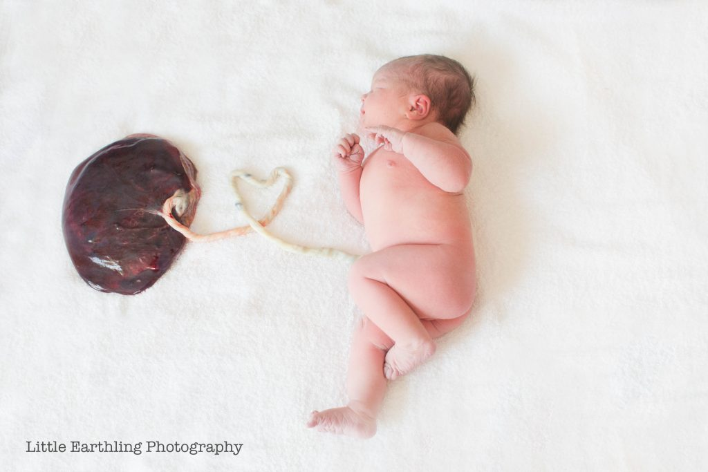 Baby still attached to placenta .Little Earthling Photography